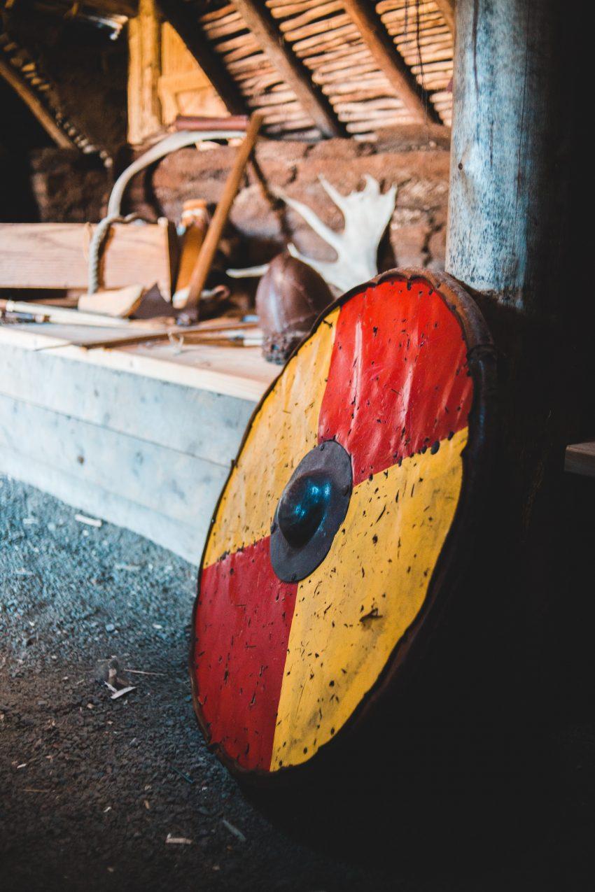 5 Curiosidades que NO Sabías sobre los Vikingos